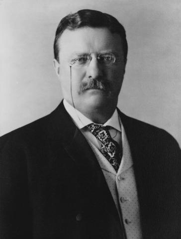 Theodore Roosevelt photo